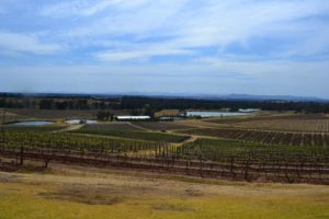 Hunter Valley, Winery Tours,